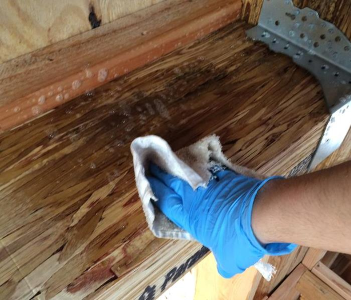 Staten Island Mold Remediation Before