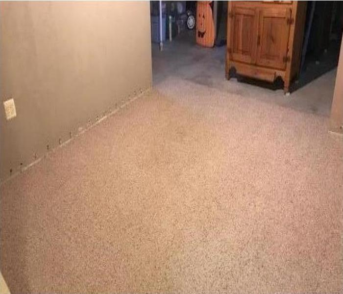 Dry, Clean and Deodorized Carpet